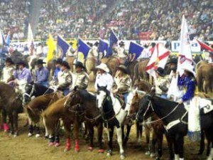 houston-rodeo-international-days